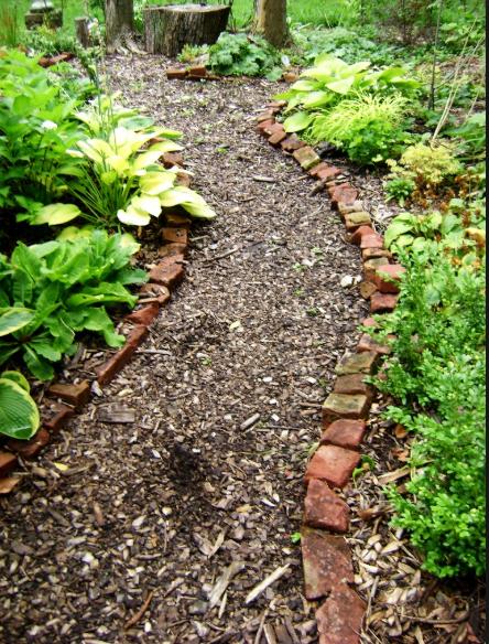 Corteza de pino usada como sendero